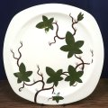 """Midwinter """"Cottage Ivy"""" dinner plate"""