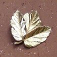 画像1: leaf brooch (1)