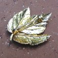 画像2: leaf brooch (2)