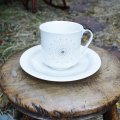"Royal Doulton ""Morning Star"" tea cup and  saucer"