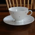 Tuscan polka dot tea cup and saucer