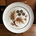 """Denby """"Cotswold"""" 25cm plate"""
