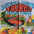 画像2: SOUVENIR OF CANADA vintage tea towel (2)